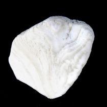 炒海螵蛸【1kg/袋】